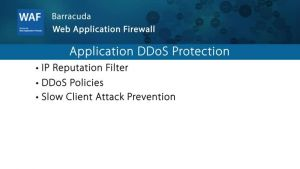 WAF020 - Application DDoS Protection