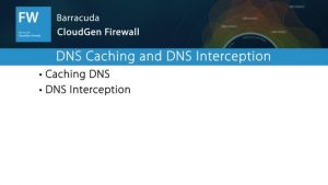 NGF03025 - DNS Caching and Interception