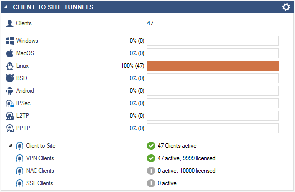 client-to-site-dashboard.png