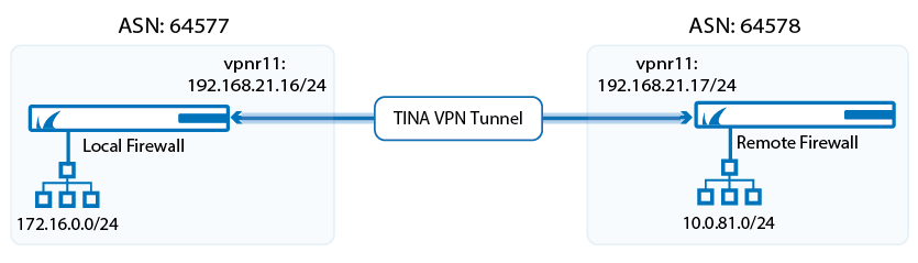 bgp_over_tina_vpn.png